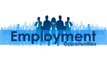 job opportunities in pune