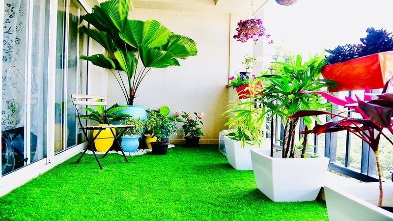 Balcony Garden In Home